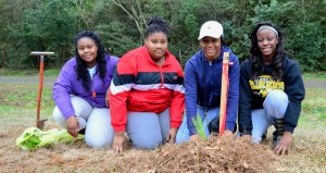 Bassfield JROTC girls got this tree in the ground. The identifying number on the stake will allow them to remember where this specific tree is they planted.